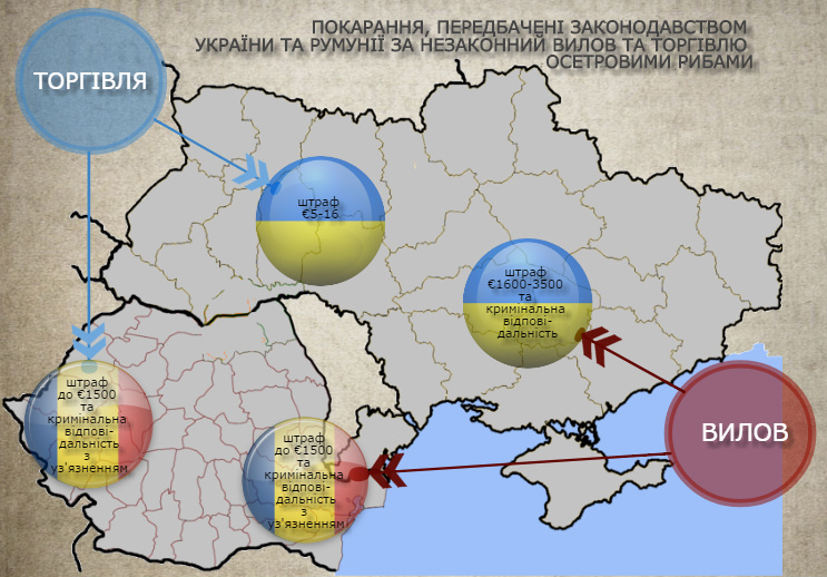 2017 05 29 workshop odessa 1 - Ukraine and Romania Have Come Together to Save the Sturgeons