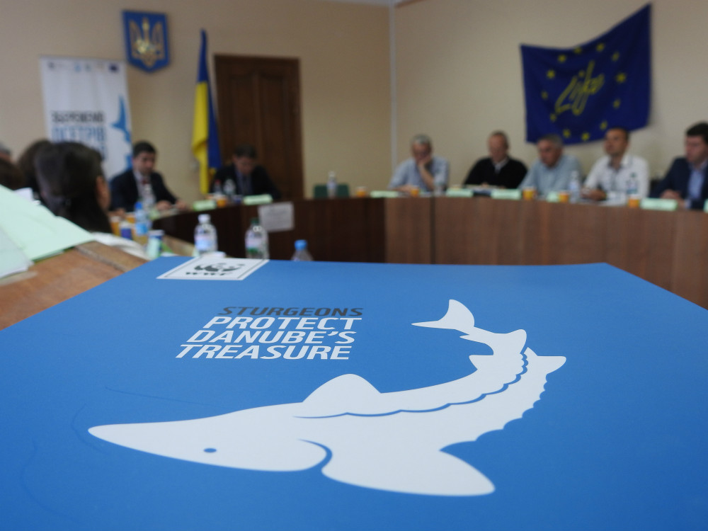 2017 05 29 wwf odessa workshop 2 - Ukraine and Romania Have Come Together to Save the Sturgeons