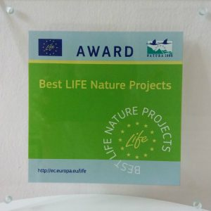 "Award 1 300x300 - ""Saving Danube Sturgeons"" wins LIFE Award as Finalist in category ""Nature and Biodiversity"""