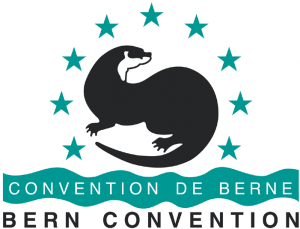 Bern Conv 300x229 - Hope for sturgeons as European states adopt action plan to save continent's most endangered fish species