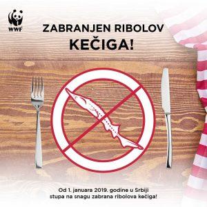 """Zabranjen ribolov kečiga 300x300 - Kampanja za zabranu ribolova kečige proglašena za """"Najbolju neprofitnu kampanju 2018"""""""
