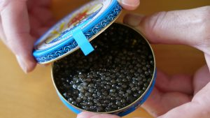 Beluga caviar©Hannes Greber WWF Austria 300x169 - Poaching and illegal trade in sturgeon pose major threat to critically endangered species in Europe, warns new report