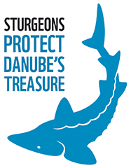 logo sturgeons - SAVING DANUBE STURGEONS selected as one of the best LIFE projects